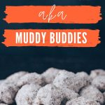 Keto Puppy Chow pin image